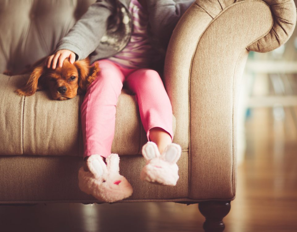 DOG ON COUCH WITH GIRL